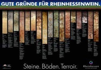 """Foto: Rheinhessen-Shop: Plakat """"Weinbergsböden"""" Rheinhessenwein e.V."""